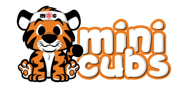 Mini Cubs Karate (Ages 2-3)